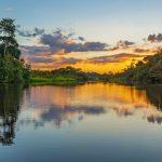 Amazon rainforest basin