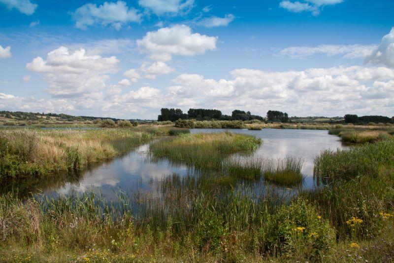 UK wetlands or peatlands