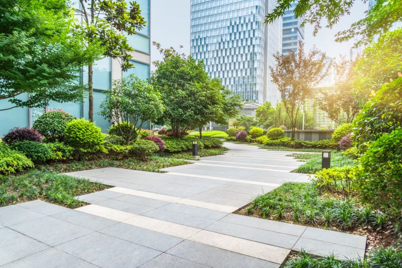 Cities adapting to climate change